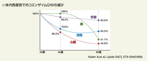 体内各器官でのコエンザイムQ10の減少 グラフ