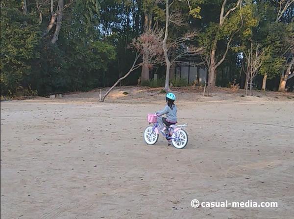 5歳自転車サイズ9